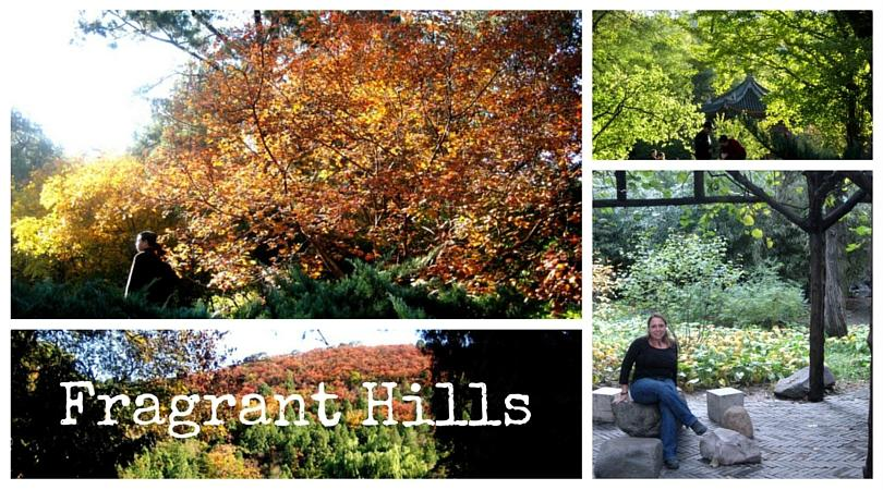 Fragrant Hills – My China Experience 21