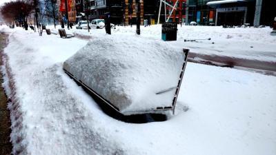 Snow Day in Washington DC 12