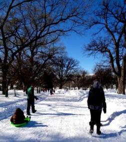 Snow Day in Washington DC 2