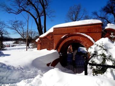 Snow Day in Washington DC 3