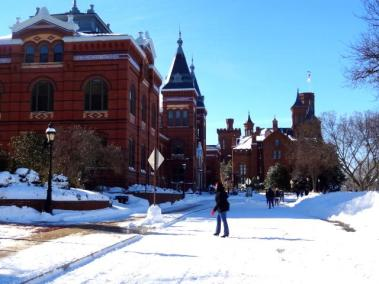 Snow Day in Washington DC 6