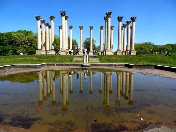 Arboretum Washington DC Capitol Columns