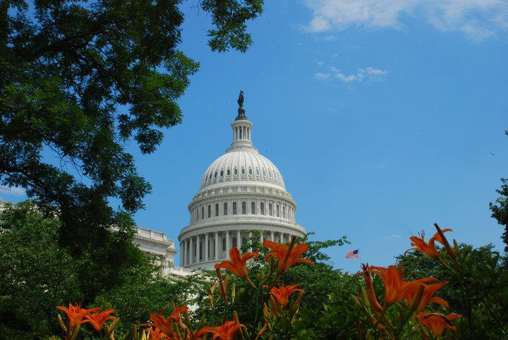 Washington DC Photography Tour - US Capitol