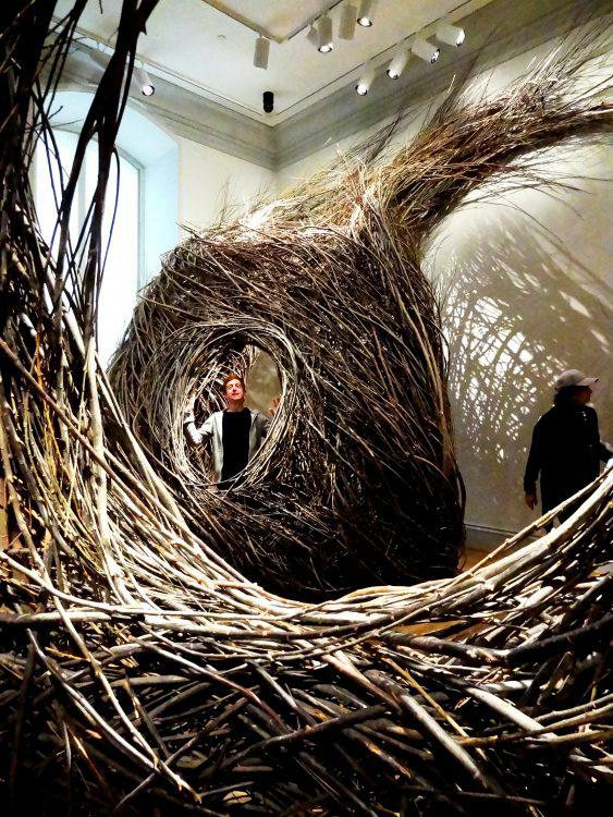 Renwick Gallery Wonders Exhibit Patrick Dougherty 1